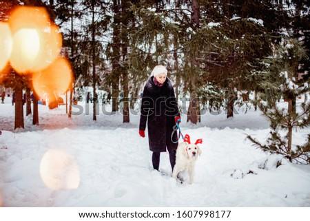 Girl walks with Labrador Retriever through forest, dog with deer horns. Christmas walk concept.