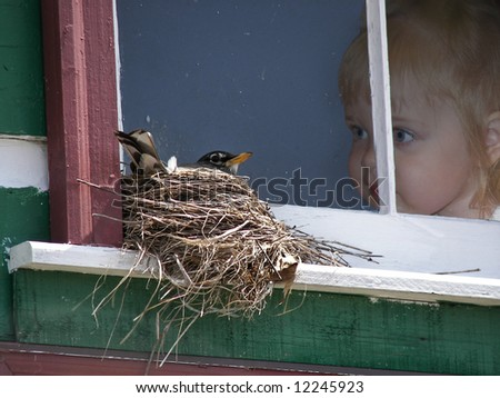 girl watching nesting bird
