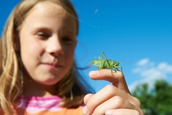 Girl with a grasshopper on a hand in summer