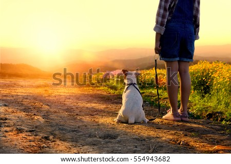Girl with dog looking sun set in flower field. #554943682