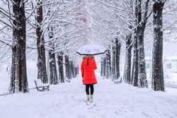 Girl with umbrella walking on the path and row trees. Winter.