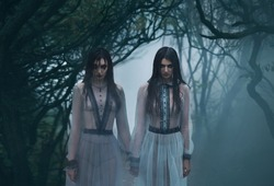 Girls are crying.Young ladies in ancient dresses walking through  woods in search of a victim.Foggy, spooky forest. horror. Fashionable color.Creative ghost. art photography.  movie
