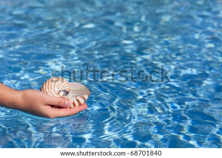girls hand holding nautilus shell full of water against deep blue water, shallow dof