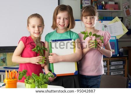 Girls learning about plants in school class