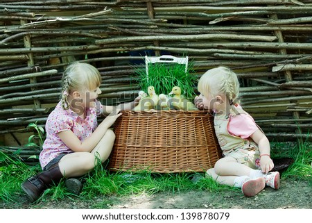 Girls play with chicken and duck