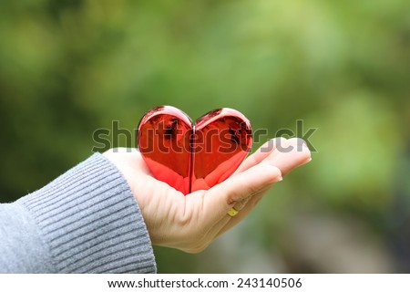 give love give heart on hand in nature valentine day