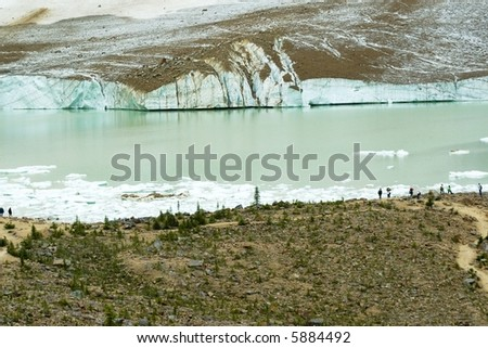 Glacial pool with large chunks of melting ice near Jasper Alberta Canada.