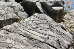 Glacial striations on a grey rock