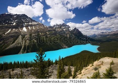 Glacially-fed Peyto Lake on a Sunny Day
