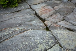 Glacially scoured, wet granite bedrock with grooves and striations, in a hiking trail near the summit of Mt. Kearsarge in Wilmot, New Hampshire.