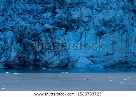 Glacier calving in Glacier Bay Alaska #1563733723