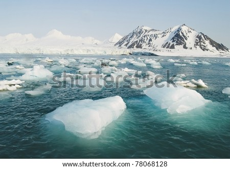 Glacier ice floating in the sea, Arctic