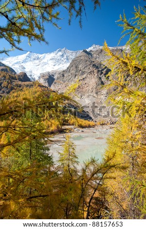 glacier lake hidden in forest above Saas Fee, Switzerland