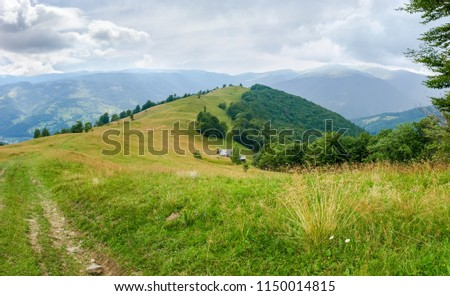 Glade on crest of the ridge with hayfield and deciduous forest on a slopes on a background of opposite slopes and sky with clouds in the Carpathian Mountains #1150014815