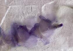 gladiolus, gladioli, frozen flower, watercolor, purple gladiolus, flowers, background, ice, frozen in ice, purple gladiolus frozen in ice, purple gladiolus frozen in ice