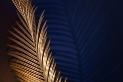 Glamor Golden tropical leaves and shadow on dark blue background, art deco style, selective focus.