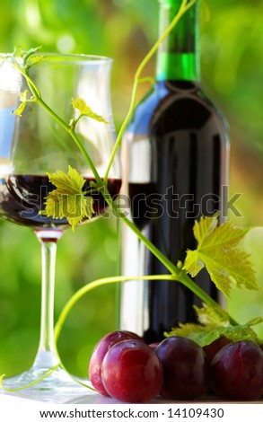 Glass and bottle of red wine with green leaf. - stock photo
