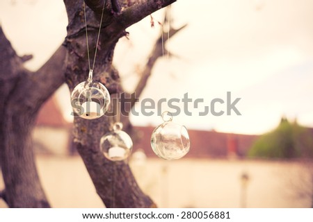 Glass ball hanging in a tree at a wedding reception.