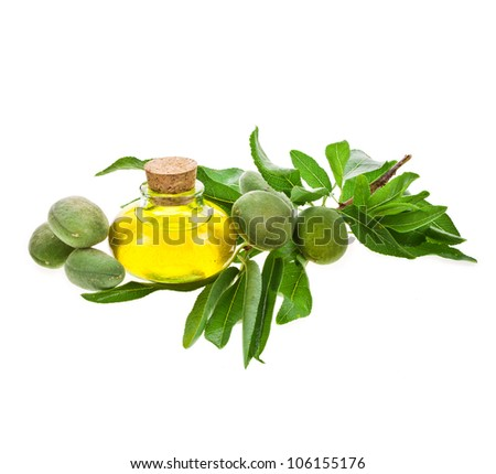glass bottle filled with almond oil and fresh almonds isolated on the white background