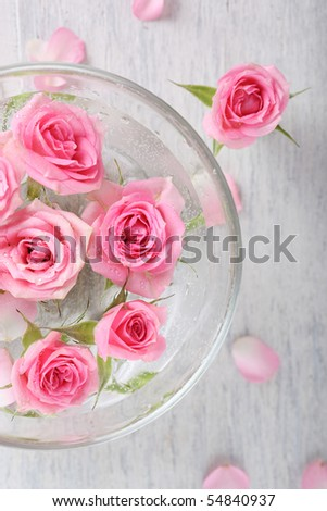 glass bowl with roses closeup