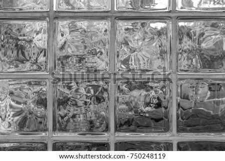 Glass bricks with view of nature, trees and shrubs. Symmetrical glass frames with outdoor park background.  Exterior architectural detail and design.