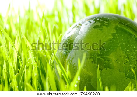 Glass earth in grass - stock photo