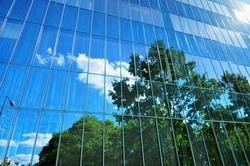 Glass exterior facade of urban building tree reflection.