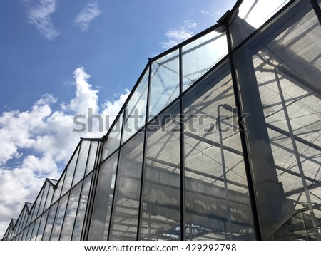 glass facade of industrial greenhouse against cloudy sky - Shutterstock ID 429292798