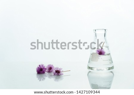 glass flask with water and pink purple cute flower in white cosmetic biotechnology science background