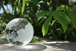 glass globe(Asia and Oceania) and the green leaves
