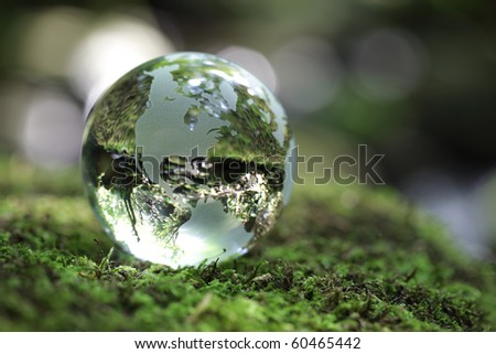 Glass globe resting on moss stone in a forest
