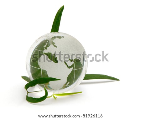 Glass globe with leaves