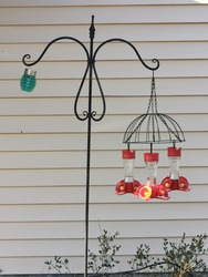 Glass hummingbird feeders hanging from an upside down wired flower basket. Red and yellow bird feeders hanging from cast iron pole.