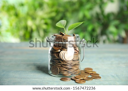 Glass jar with coins and green plant on light blue wooden table stock photo