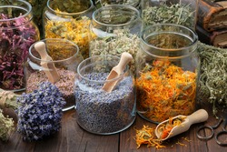 Glass jars of dry lavender and calendula flowers. Jars of dry medicinal herbs for making herbal tea, bunch of dry lavender on table. Alternative medicine.