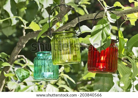 glass lantern hanging on a tree in the garden