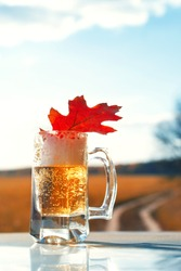 Glass of beer and a bright red autumn leaf against the background of the blue sky on the autumn sunny day.