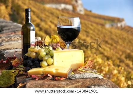 Glass of red wine on the terrace vineyard in Lavaux region, Switzerland
