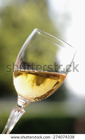 Glass of sparkling wine on a blurred background with sky and foliage of trees.