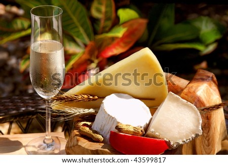 Glass of white wine and assorted cheeses for wine tasting