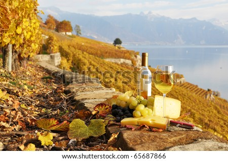 Glass of white wine and cheese on the terrace vineyard in Lavaux region, Switzerland