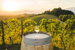 Glass of white wine on wooden wine barrel in the vineyards at susnset
