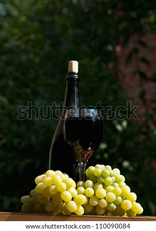 glass of wine and fresh green grapes in the garden