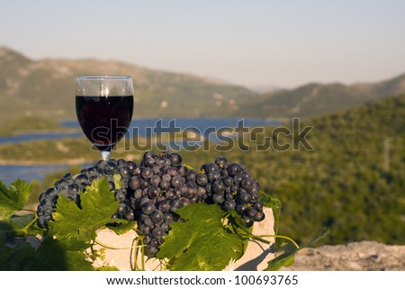 Glass of wine and grapes on stone