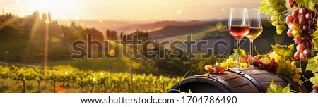 Glass Of Wine With Grapes And Barrel On A Sunny Background. Italy Tuscany Region
