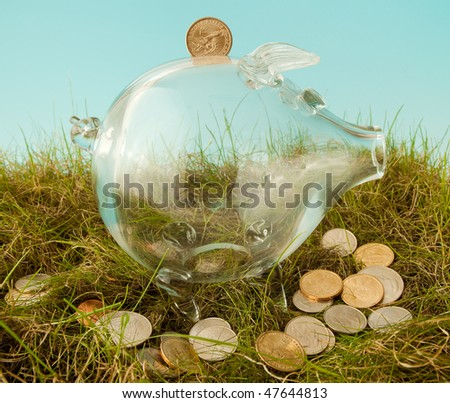 Glass piggy bank and scattered dollars in grass - stock photo