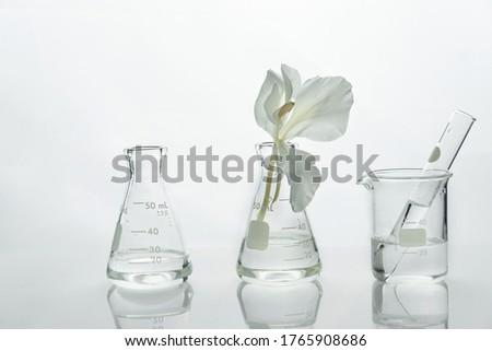 Chemistry Set Laboratory Glassware Test Tubes - Science - Cliparts  Transparent PNG