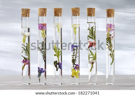 Test Tube Plug Glass Test Tubes With