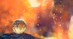 glass transparent ball with reflection, abstract nature background. beautiful autumn image. mystery fall season.