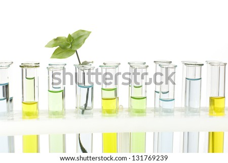 glass tubes with colored solutions and germ